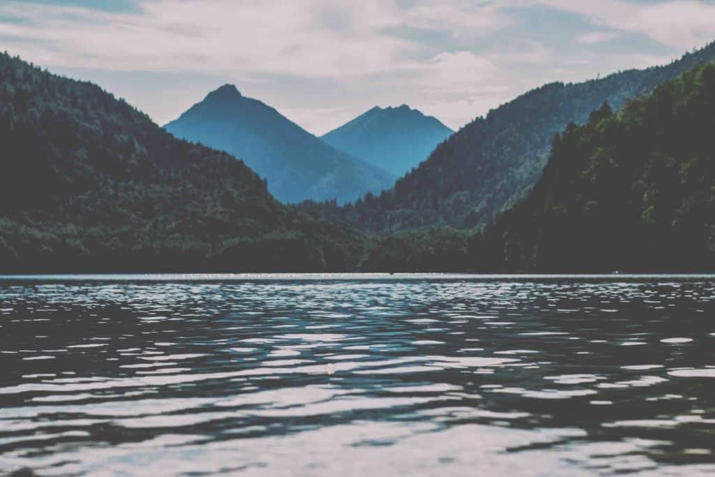 header image - refuge counseling